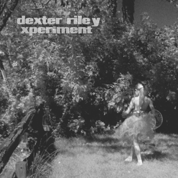 Common Loon, by dexter riley xperiment on OurStage