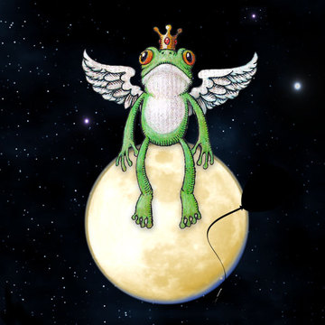 The Frog Prince, by Homeless Balloon on OurStage