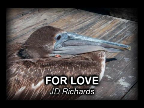For Love, by JD Richards on OurStage