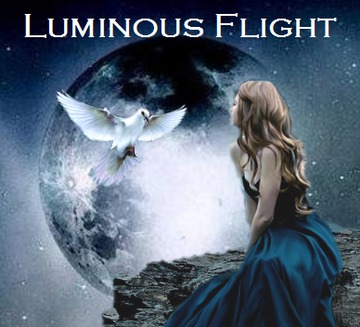 Untitled upload for Luminous Flight, by Luminous Flight on OurStage