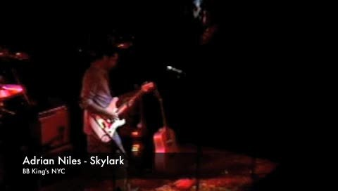 Skylark (BB King's Club NYC), by Adrian Niles on OurStage