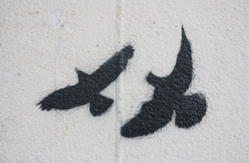 Birds, by Arturo on OurStage