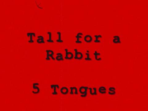 Tall for a rabbit, by 5 tongues on OurStage