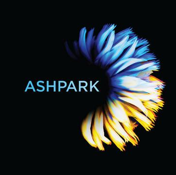 Ashpark Teaser - The Riddle, by Ashpark on OurStage