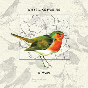 Coastlines and Skylines, by Why I Like Robins on OurStage