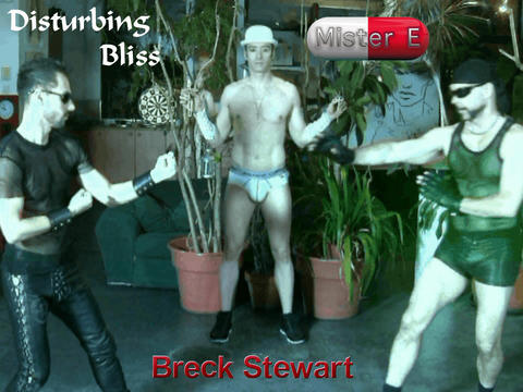 Mister E - Disturbing Bliss, by Breck Stewart on OurStage