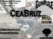 evreybodyelse t-pain ft.ceabruz, by CEABRUZ on OurStage