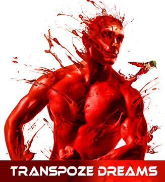 Transpoze Dreams, by volkandogan on OurStage