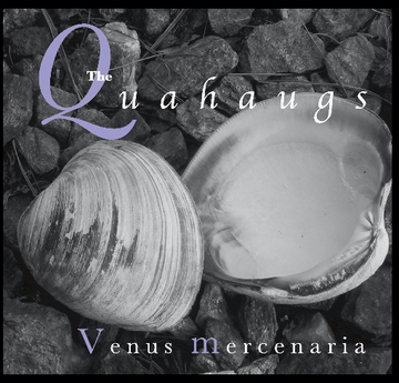 1st Night, by The Quahaugs on OurStage