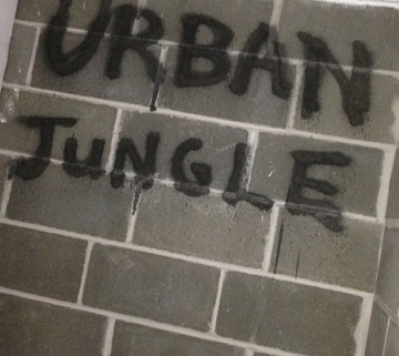 Urban Jungle, by Michael Riser on OurStage