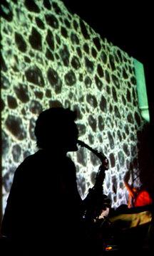 Pedro, by Los Musicos de Jose on OurStage