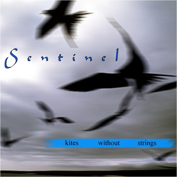 Wreckage , by Sentinel on OurStage