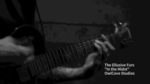 THE ELLUSIVE FURS, by THE ELLUSIVE FURS on OurStage