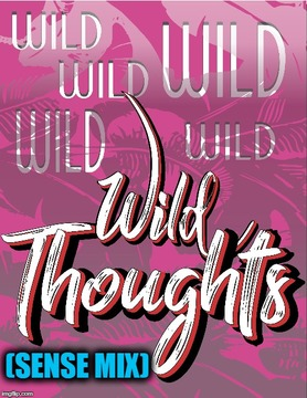 Wild Thoughts (Sense Mix), by Ro Sensual on OurStage