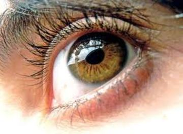 Tus Ojos, by KARNAL on OurStage