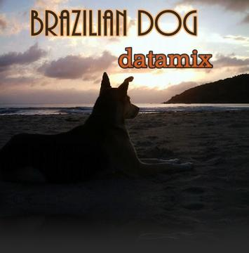 Brazilian Dog, by datamix on OurStage
