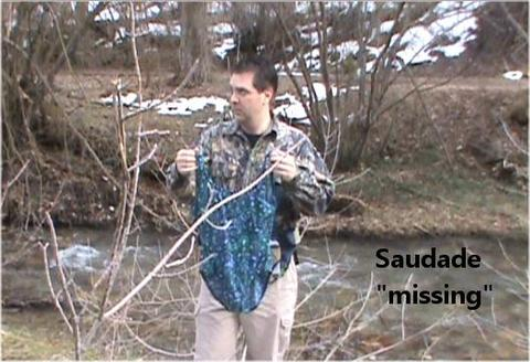 Missing, by Saudade on OurStage