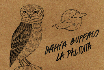 La Palidita, by Bahía Buffalo on OurStage