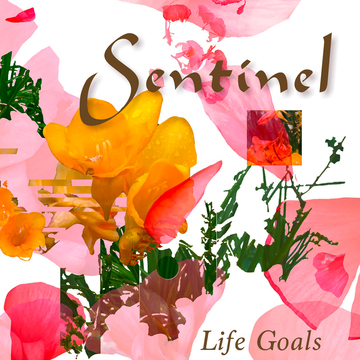 LIFE GOALS, by Sentinel on OurStage