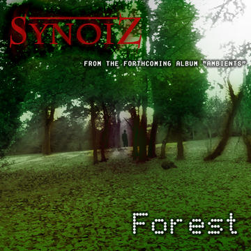 Forest, by Synoiz on OurStage