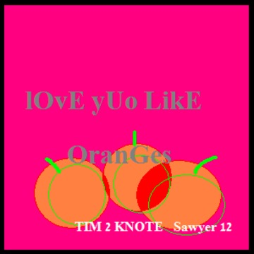 """LOve yOu LiKE oRaNgEs, by TIM """" Hot licks """" on OurStage"""