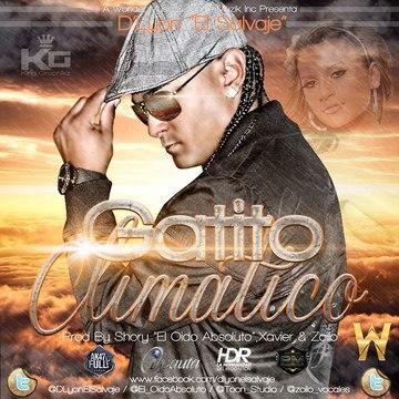 """Gatito Climatico, by D'Lyon""""El Salvaje"""" on OurStage"""
