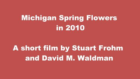 Michigan Spring Flowers 2010 , by David Waldman on OurStage