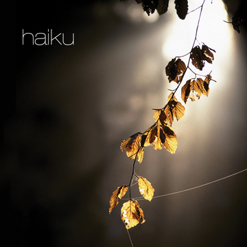 Mist, by haikumusic on OurStage