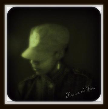 """""""Soldier"""" by P.E.A.C.E. W/D.J. Jewels, by P.E.A.C.E. the Poetess on OurStage"""
