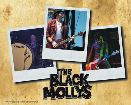 Hollywood, by The Black Mollys on OurStage