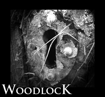 Come Back Soon, by Woodlock on OurStage