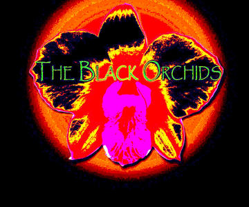 BACKSEAT DRIVER, by THE BLACK ORCHIDS on OurStage