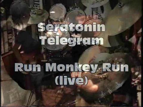 Run, Monkey, Run! Pt. I, by Seratonin Telegram on OurStage