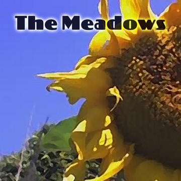 Count On Me, by The Meadows on OurStage