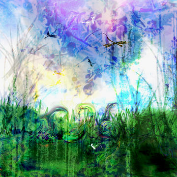 Field of Dreams, by Merry Ellen Kirk on OurStage