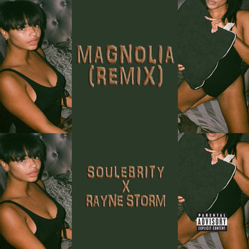 Soulebrity & Rayne Storm - Magnolia (Remix), by Rayne Storm on OurStage