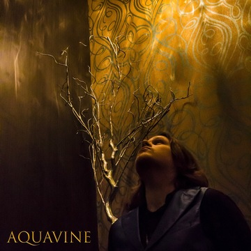 Within (Alternative Version), by AQUAvine on OurStage