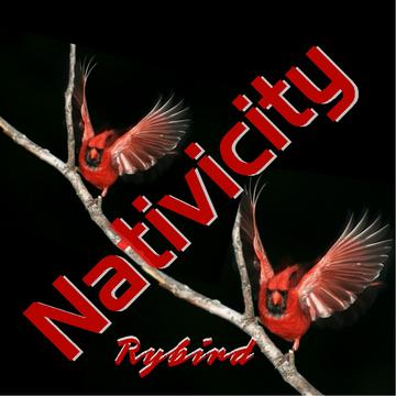 Nativicity, by Rybird on OurStage
