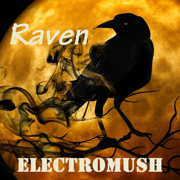 Raven, by ElectroMush on OurStage