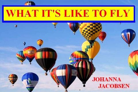 """""""WHAT IT'S LIKE TO FLY"""" PERFORMED BY JOHANNA JACOBSON, by JOHANNA JACOBSEN on OurStage"""
