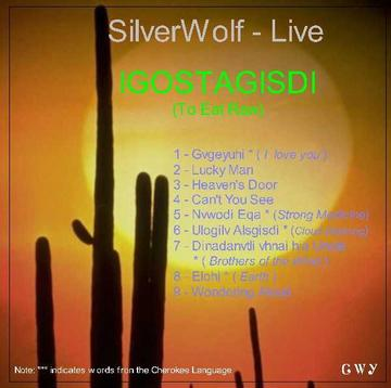 Live Flute Medley, by SilverWolf on OurStage