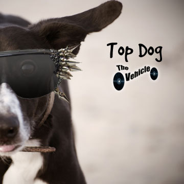 Top Dog, by The Vehicle on OurStage