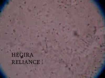 "Hegira Presents ""Reliance"", by Hegira on OurStage"
