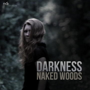 Darkness, by Naked Woods on OurStage