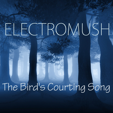 The Bird's Courting Song, by ElectroMush on OurStage