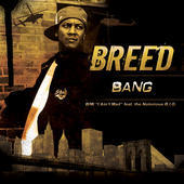 """BANG"", by BREED on OurStage"