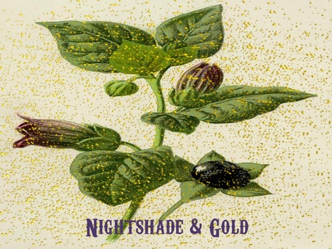 "Nightshade and Gold cover of ""Gypsy"" featuring Lauribeth, by Lauribeth with ""BACK IN SESSION"" on OurStage"
