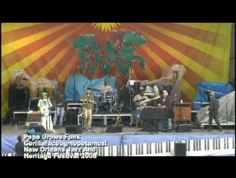 Gorillafaceugmopotamus!, by Papa Grows Funk on OurStage