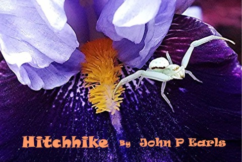 Hitchhike, by John P Earls on OurStage