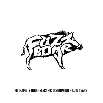 Electric Disruption, by Fuzzboar on OurStage